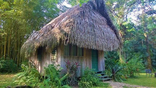 Punta Gorda, Belize: Thatched casita