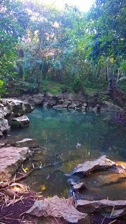 Foto Punta Gorda
