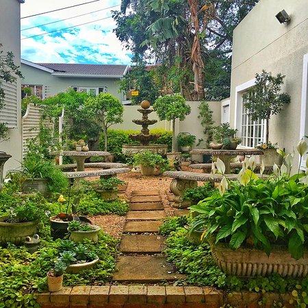 Sandals Guest House : Court Yard garden