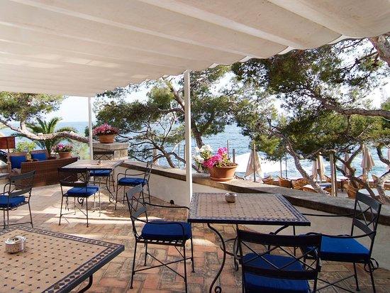Hotel Bendinat Mallorca Tripadvisor