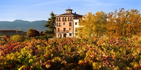 Ollauri, Espagne: Bodegas Beronia y los viñedos que la rodean