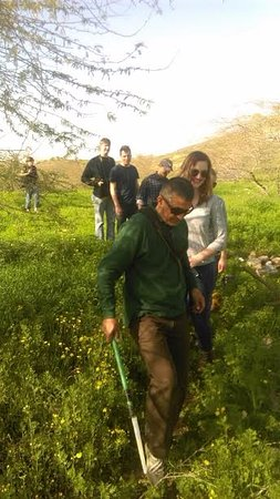 Irbid, Jordania: ممرات للمشي trails for hiking