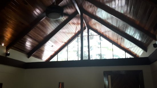 Cocles, Costa Rica: 20170311_104706_large.jpg