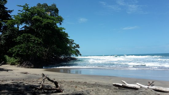 Cocles, Costa Rica: 20170311_122108_large.jpg