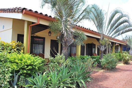 Dos Palmas Studio Apartments