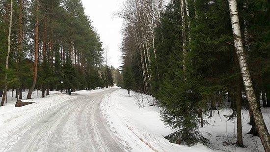 Noginsk Photo