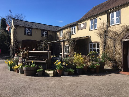 The Swan Inn: Sunshine on the Swan