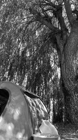 La Palud sur Verdon照片