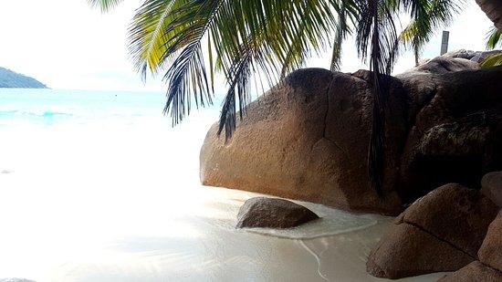 Praslin-øya, Seychellene: IMG-20170313-WA0028_large.jpg
