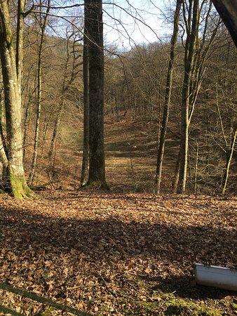 Baerenthal, Frankrijk: photo4.jpg