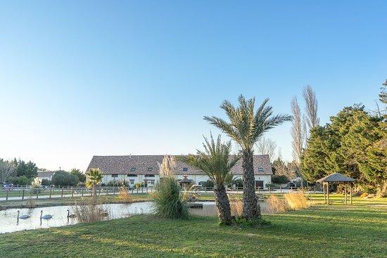Saint-Gilles, Francia: Parc extérieur