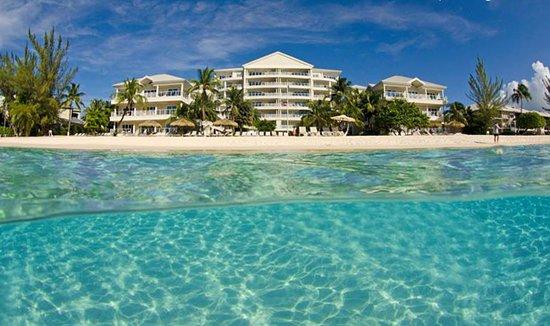 The 10 Best Restaurants In Grand Cayman Updated November