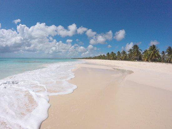 Jolly Harbour, Antigua: Barbuta+razze
