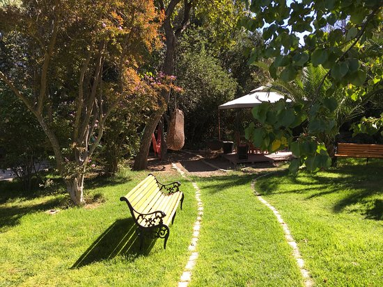 Hostal Aldea Del Elqui: Various views of the Garden at Alden del Elqui