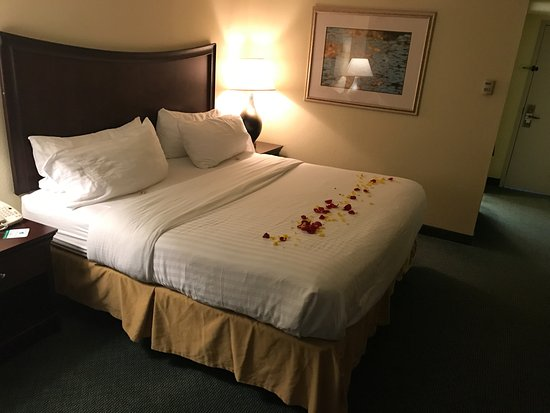Holiday Inn Express Plainfield / Indianapolis Photo