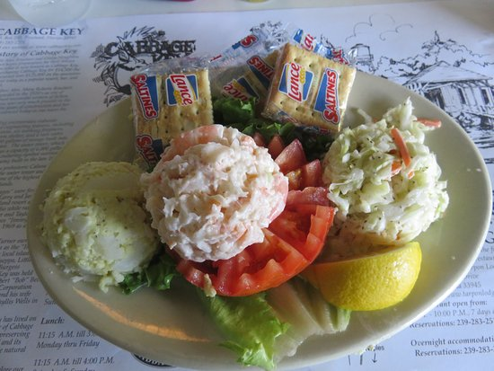 Southwest Gulf Coast, FL: Shrimp Salad