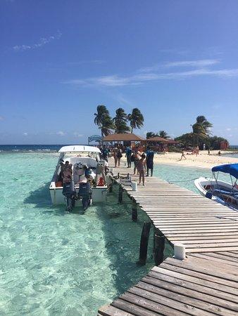Goff's Caye: Il pontile e l'intera Isola