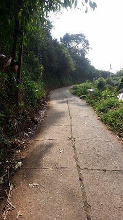 Rheinberg Homestay : The steep lane to the property