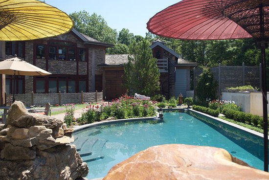 East Hampton Art House Bed and Breakfast: Pool, Patio, and Garden