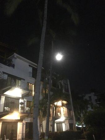 بويرتو دو لونا أول سويتس هوتل: Noches hermosas y en las habitaciones las mascotas descansan muy tranquilos