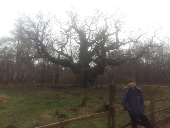 Nottinghamshire, UK: 20170216_122305_large.jpg
