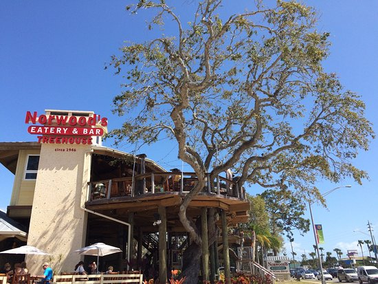 norwood s eatery bar treehouse new smyrna beach menu prices rh tripadvisor com