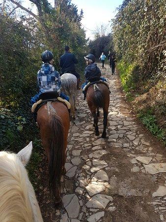Galaroza, Spanyol: IMG-20170227-WA0021_large.jpg