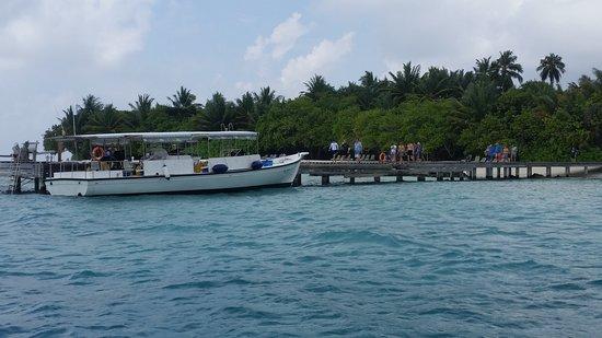 Kuramathi Island Resort: Spero di essere stato utile.