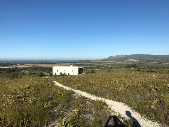 Farm 215 Nature Retreat & Fynbos Reserve: Fynbos Suite