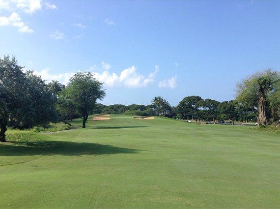 Wailea Old Blue Course: photo1.jpg