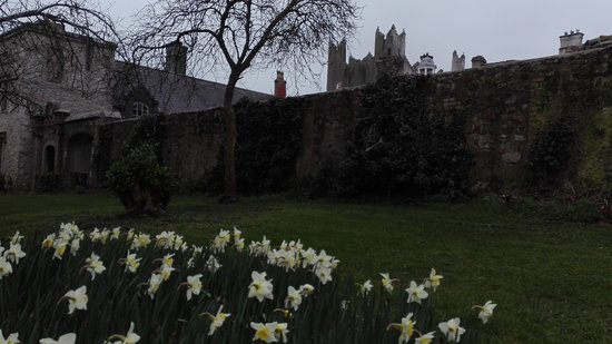 Howth Castle: IMG_20170311_162815_large.jpg