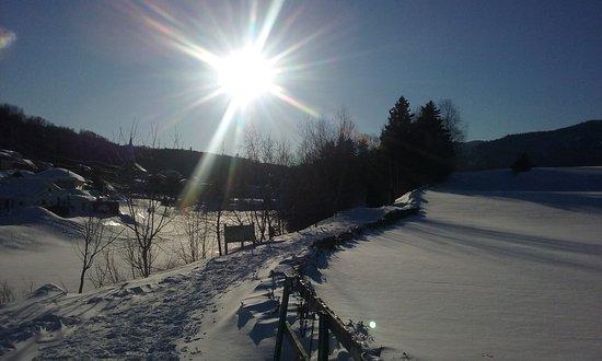 L'Anse-Saint-Jean, Canada: piste de ski de fond