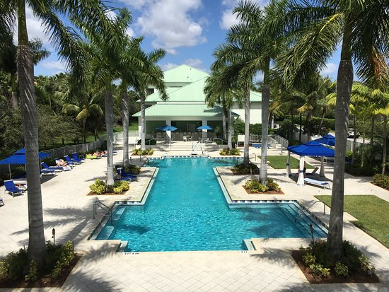 Provident Doral at The Blue Miami: Pool