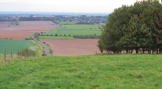 Broad Hinton, UK: The view from just above the horse