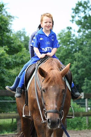Zutendaal, Bélgica: Brave kindjes doen op zondagvoormiddag na het ontbijt een tochtje op ons paard.