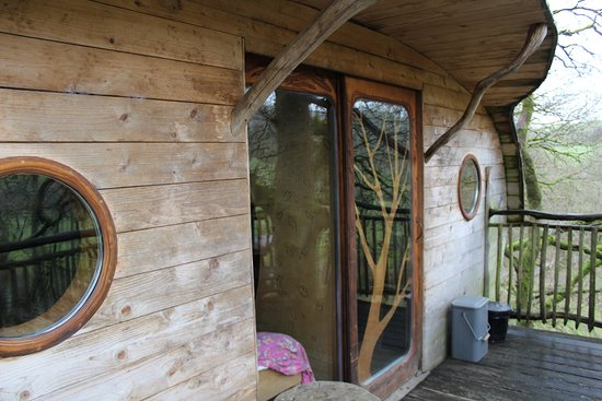 Machynlleth, UK: The front of our treehouse Ty-Myar (Timmy)