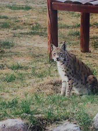 Izmir Wild Life Park: photo4.jpg