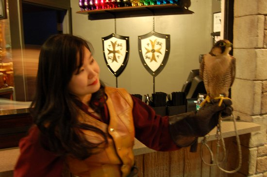 Medieval Times Maryland Castle: After the show you can meet the performers. I got to say hi to (but did not pet) the hawk! :D
