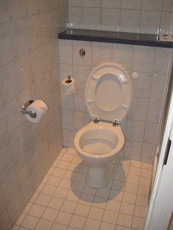 Toilet (deur van badkamer kan hier ook sluiten). - Picture of ...