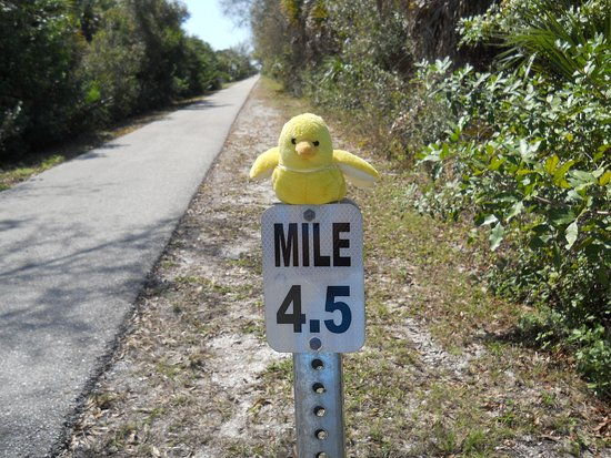 Rotonda West, FL: Appreciate the humor of a prior visitor.
