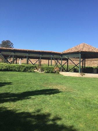 Lo Abarca, Chile: Viña Casa Marín