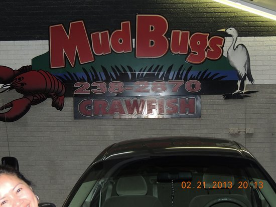 Leesville, LA: Mud Bugs