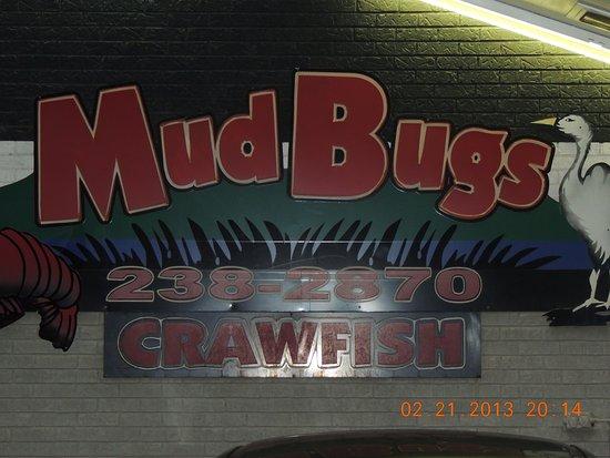 ลีส์วิลล์, หลุยเซียน่า: Mud Bugs