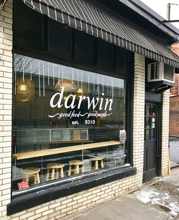 Darwin on Clinton : A excellent delicatessen in Syracuse