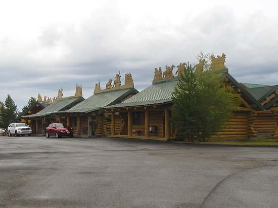 Hibernation Station照片