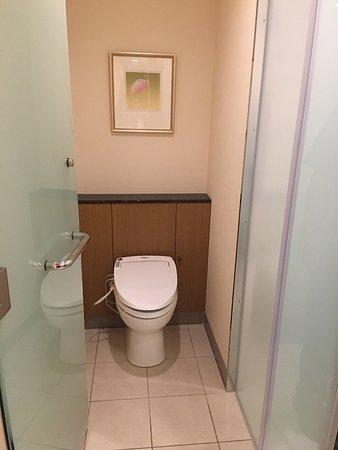 Imperial Hotel Tokyo: Toilet has a door