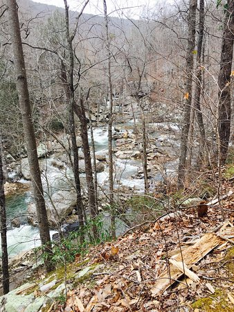 Dayton, TN: Laurel Snow pocket wilderness; beautiful hike with excellent water opportunities and rock climbi