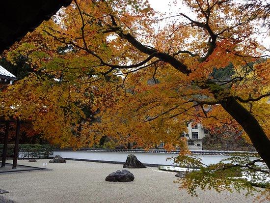 Gyokudo Art Museum : 雪のお庭です。