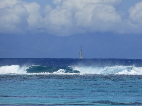 Rande's Shack : Waves crashing on the reef about 1/8 mi. off the beach