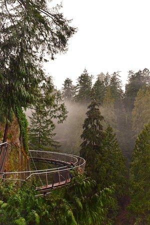 Kuzey Vancouver, Kanada: Instagram: @annadecarle